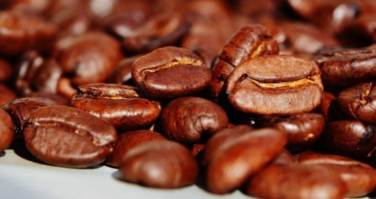 Degustación de Cafés de Origen