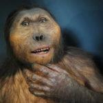 Visita Virtual al Yacimiento y el Museo de Atapuerca